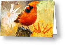The Curious Cardinal Greeting Card