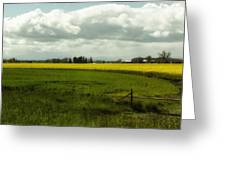 The Curve Of A Mustard Crop Greeting Card