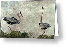The Dance Of Life - Great Blue Herons In Mating Ritual - Digital Painting Greeting Card