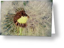 The Dandelion Nucleus Greeting Card