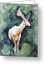 The Deer Greeting Card