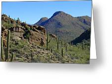 The Desert Mountains Greeting Card
