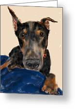 The Doberman Greeting Card