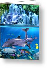 The Dolphin Family Greeting Card