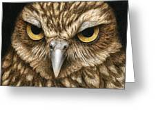 The Dubious Owl Greeting Card