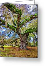 The Dueling Oak 2 Greeting Card