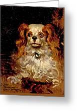 The Duke Of Marlborough. Portrait Of A Puppy Greeting Card