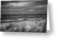 The Dunes In Winter Greeting Card