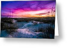 The Dunes On St Simons Island Greeting Card