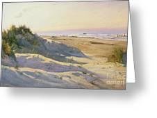 The Dunes Sonderstrand Skagen Greeting Card by Holgar Drachman