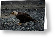 The Eagle And Its Prey Greeting Card
