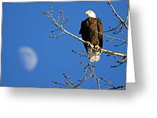 The Eagle Has Landed Greeting Card