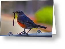 The Early Bird Greeting Card