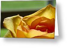The Edge Of Yellow Greeting Card