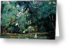 The Egrets Have Landed Greeting Card