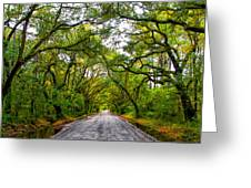 The Emerald Forrest Greeting Card