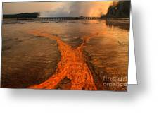 The Enchantment Of Grand Prismatic Spring Greeting Card
