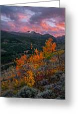 The End Of Autumn - Rocky Mountain National Park Greeting Card
