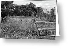 The End Of The Fence Bw Greeting Card