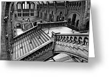 The Escher View Greeting Card by Martin Williams