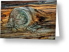 The Eye In The Wood Greeting Card