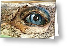 The Eye Of Nature 1 Greeting Card