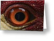 The Eye Of The Crane Greeting Card