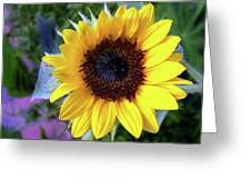 The Eye Of The Flower Greeting Card
