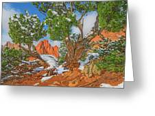 The Ferruginous Earth Of The Rocky Mountain West Greeting Card