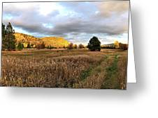 The Field Of Dreams Greeting Card
