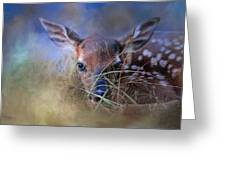 The First Fawn Greeting Card
