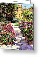 The Five Steps Greeting Card by David Lloyd Glover