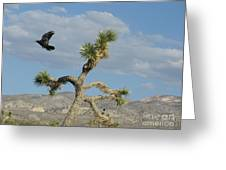 The Flight Of Raven. Lucerne Valley. Greeting Card