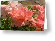 The Flower Field Season Greeting Card
