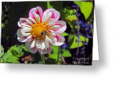 The Flower Keeper Greeting Card
