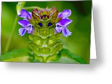 The Flower King Greeting Card