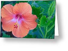 The Flower Greeting Card