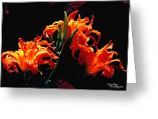 The Flower Of Fire Greeting Card