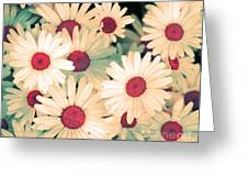 The Flowers At 5 Am Greeting Card