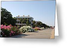 The Flowers At The Battery Charleston Sc Greeting Card