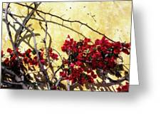 The Flowers Of Carmel 2 Greeting Card