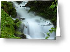 The Flowing Brook Greeting Card