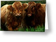 The Fluffy Cows Greeting Card