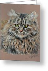 The Fluffy Feline Greeting Card by Terry Kirkland Cook