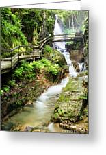 The Flume Gorge Lincoln New Hampshire Greeting Card