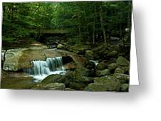 The Flume Gorge Trail Greeting Card