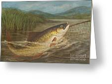 The Fly Fisherman's Net Greeting Card