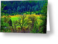 The Forest Echoes With Laughter 2 Greeting Card
