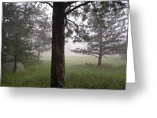 The Forest In The Mist Greeting Card