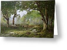 The Forest Of Fontainebleau Greeting Card by Leon Richet